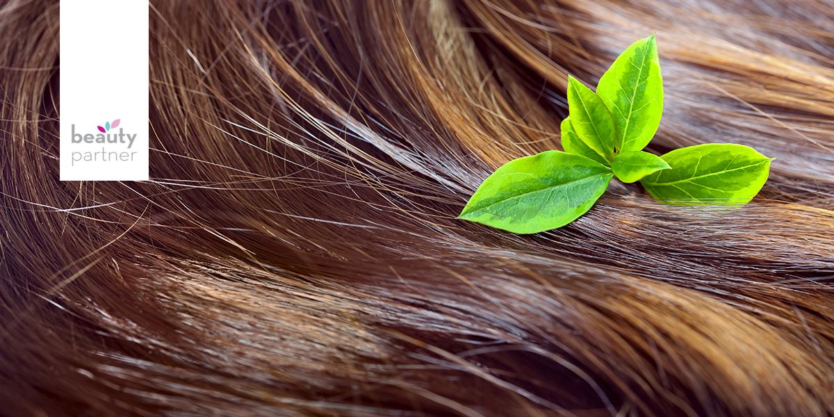 növényi hajápolás