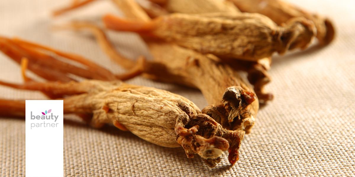 Ginzeng- az erőt adó gyógynövény